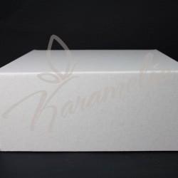Упаковка для тортов, 230 * 230 * 100