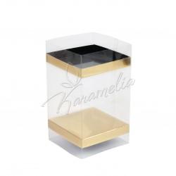 Упаковка универсальная Изи Пак, 100 * 100 мм